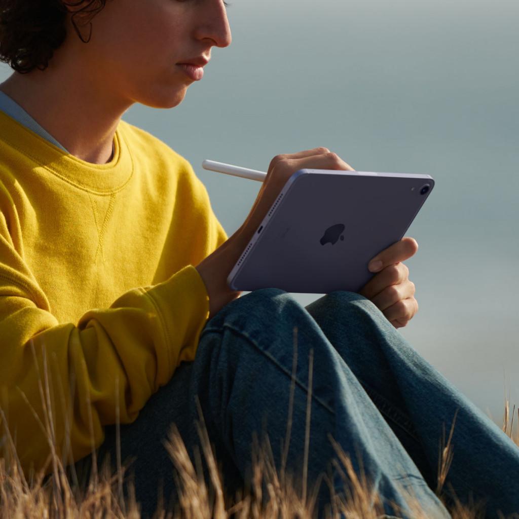 iPad mini Wi-Fi + Cellular 256GB Stellargrå